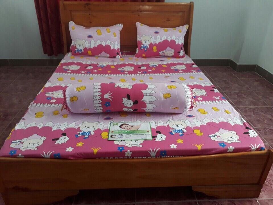Bộ chăn drap gối 002 korea ngủ ngon